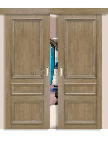 Двойная раздвижная дверь Вероника 5